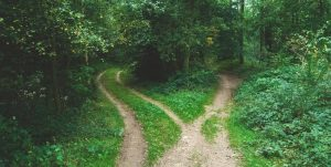 Fork in the road for financial decisions